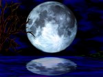 NightScene1600x1200.jpg